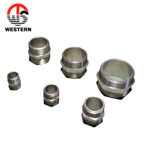 Chrome Plated Galvanized Male Thread Pipe Tube Fitting Brass Hexagon Nipple