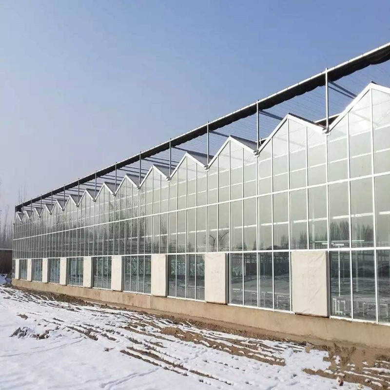 Customized Greenhouse Polycarbonate Customized Large Span Commerical Polycarbonate Sheet Anti-fog Greenhouse For Agriculture