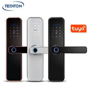 Waterproof Tuya WiFi App Smart Door Lock Biometric lock fingerprint door handle Digital Keyless lock
