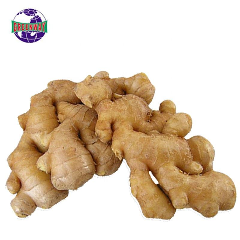 High quality ail naturally planted organic fresh good quality ginger organic