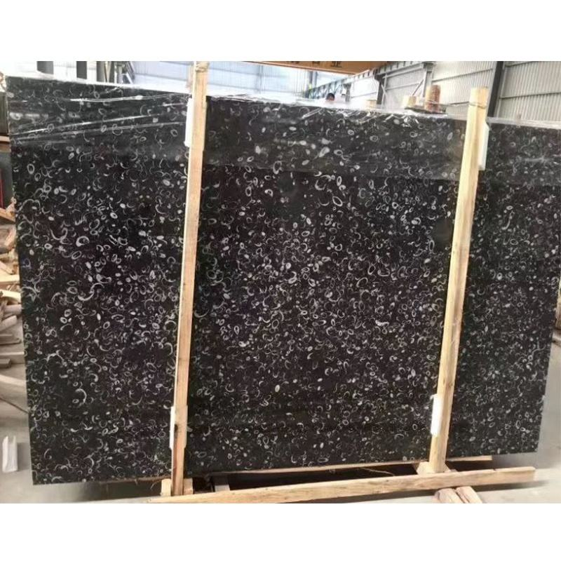 China Black Fossil Marble Slab for Bathroom Vanity Countertop Design