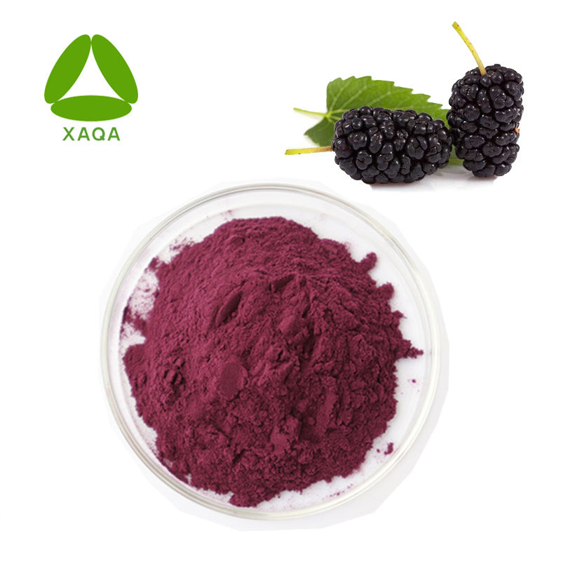 Hot Sale Natural Pemutih Kulit Daun 10:1 Mulberry Jus Ekstrak Bubuk