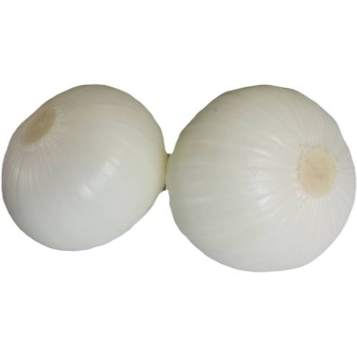 2020 fresh new crop Yellow onion shallot factory direct sale price