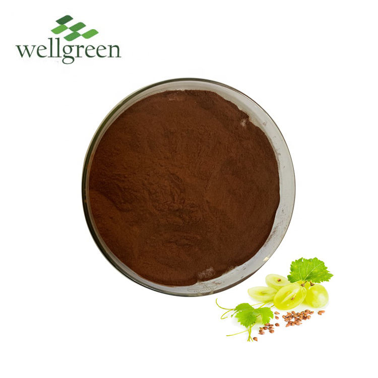 Natural Cosmetic Ingredients Price of Grape Seed Extract for Skin