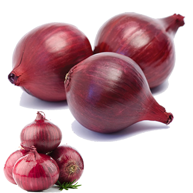Top Quality Fresh Onions Red white yellow onion cheap price Fresh organic