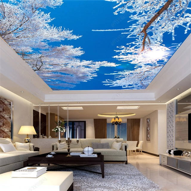 China Material Design Fabric 3d Stretch Ceiling