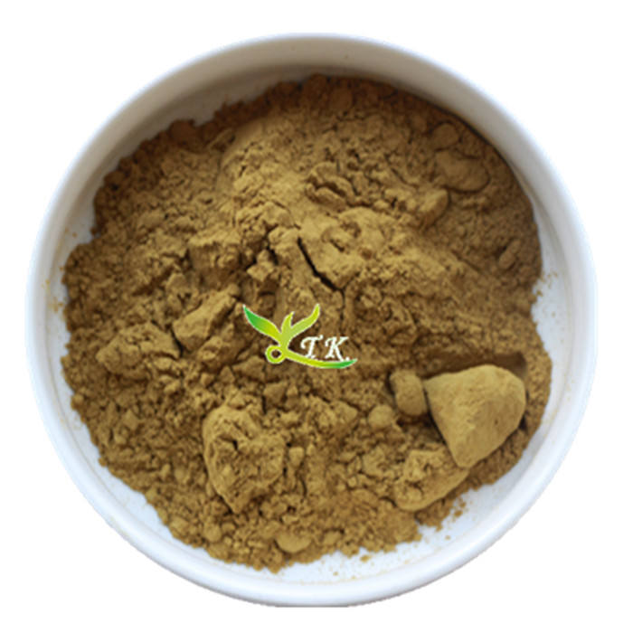 High Quality Top Grade Organic Camellia Saponin Seed Powder