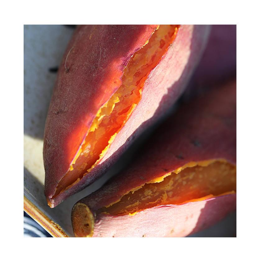 Bulk wholesale high-quality sweet potatoes authentic fresh organic stream oil sweet potatoes