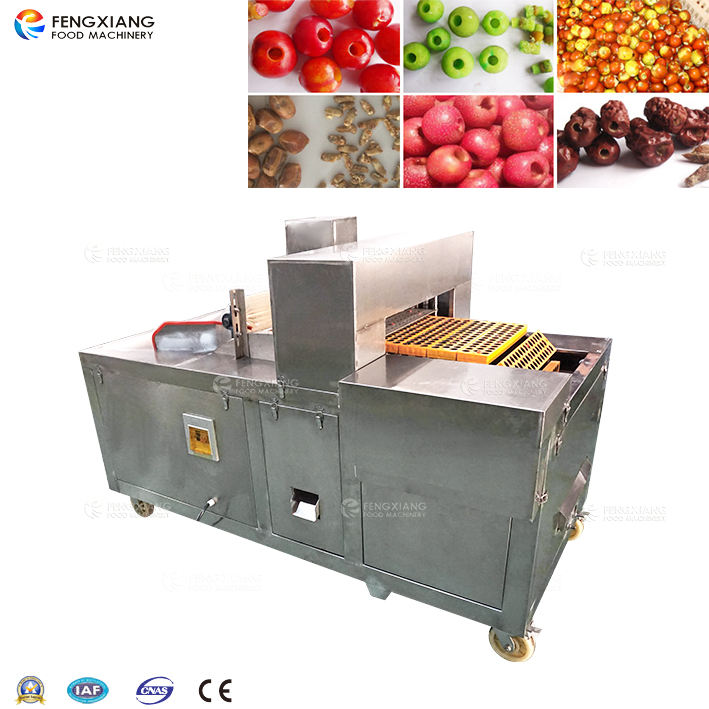 Commercial use fruit stone coring seed removing plum olive cherry pitting machine