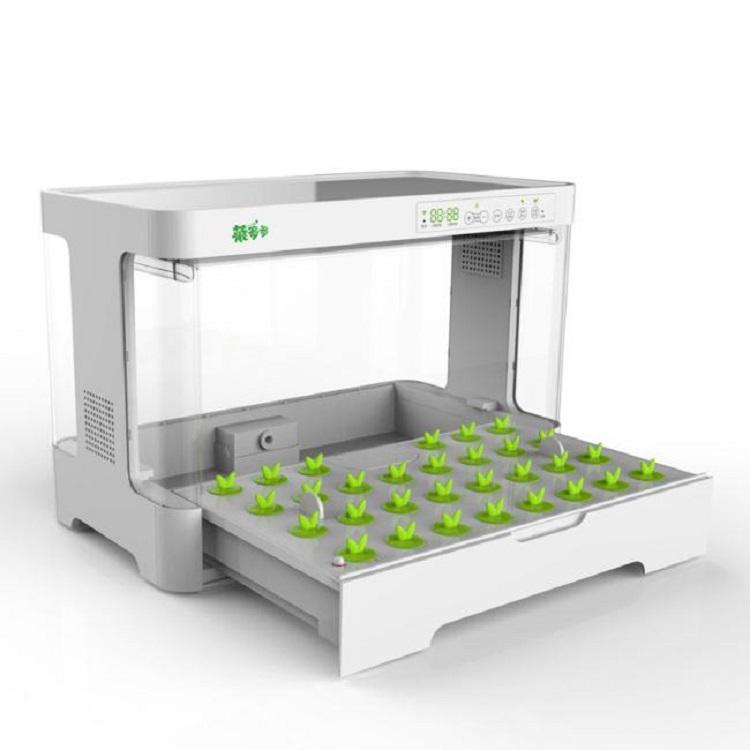 Small intelligent home hydroponic planting box for growing