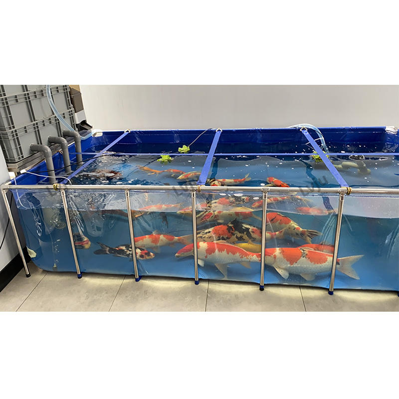 Luxe Decor Indoor Pvc Aquarium Aquacultuur Rvs Transparant Huisdier Vis Aquarium Voor Koi/Betta/Guppy Vis