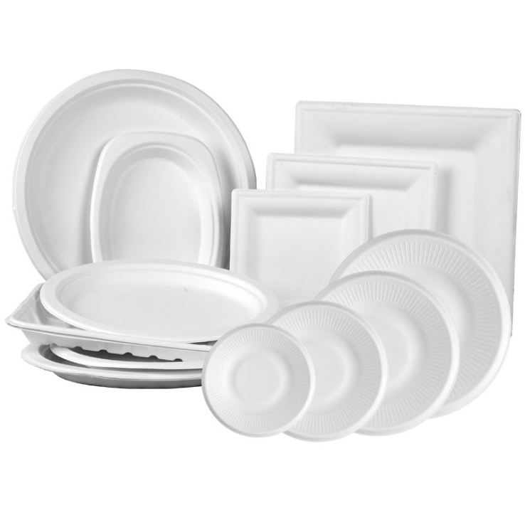 Disposable Biodegradable ODM oill proof Sugarcane Bagasse Paper Plates