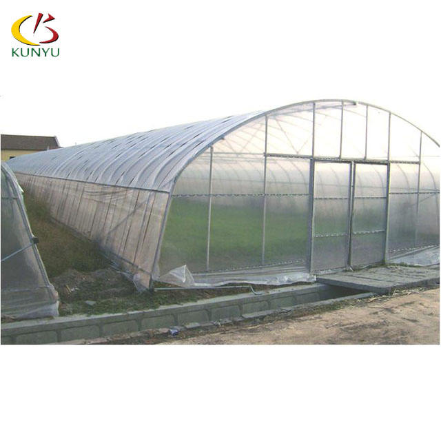 Foshan kunyu 8M single span plastic film high tunnel greenhouse