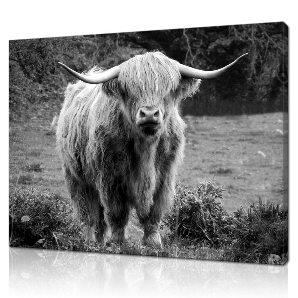 Canvas Wall Art Prints Black and White Highland Cow Painting Picture Farm Animal Modern Home Office Living Room Decor