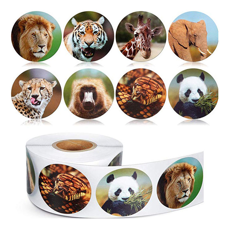 Adhesive Waterproof PVC Label Sheet Company Logo Design Cartoon Stickers