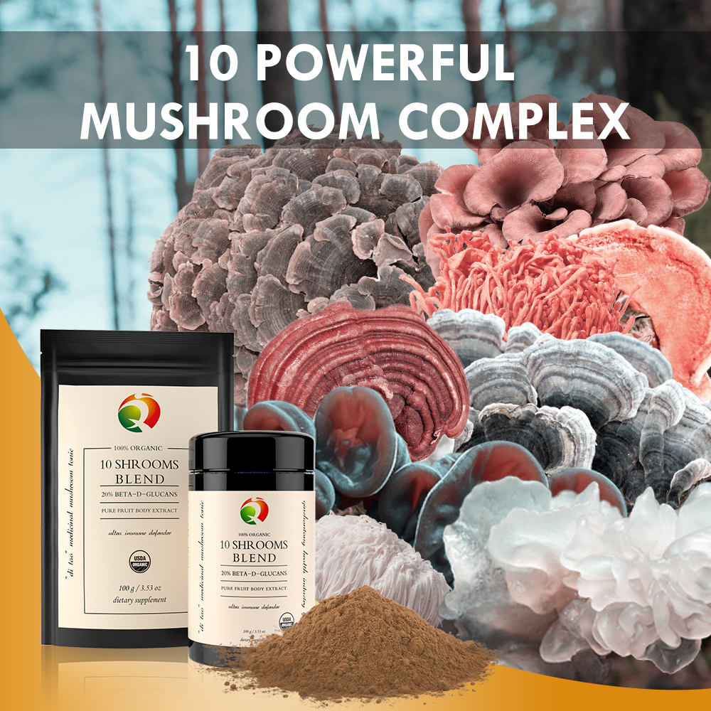 Organic 10 Mushroom Blend 30% Beta-glucan Extract Powder