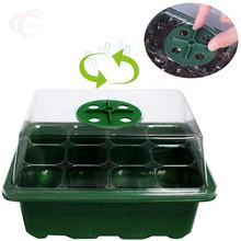 Seed Trays Seedling Starter Tray with Humidity Dome and Greenhouse Grow for Seeds Growing Starting