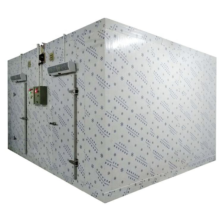 Wholesale cold room manufacturer made walkin freezer fish cold room