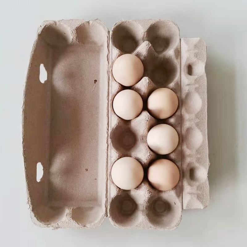 Egg [ Pulp Fiber ] Paper Pulp Egg Carton Biodegradable Pulp Fiber Egg Tray Molded Paper Pulp Packaging Tray