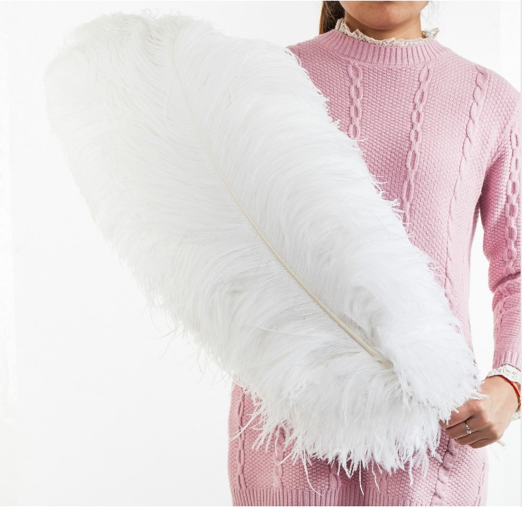 Free Shipping Wholesale All Sizes and Colors in Stock Cheap Bulk White Ostrich Feathers