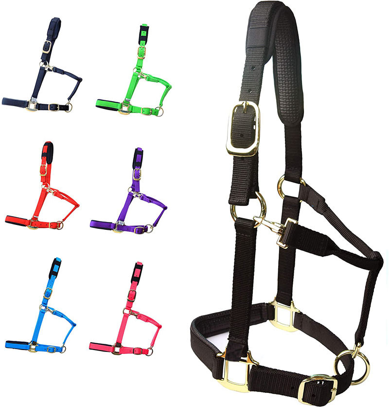 Horse Halter Adjustable with Cushioned Padding