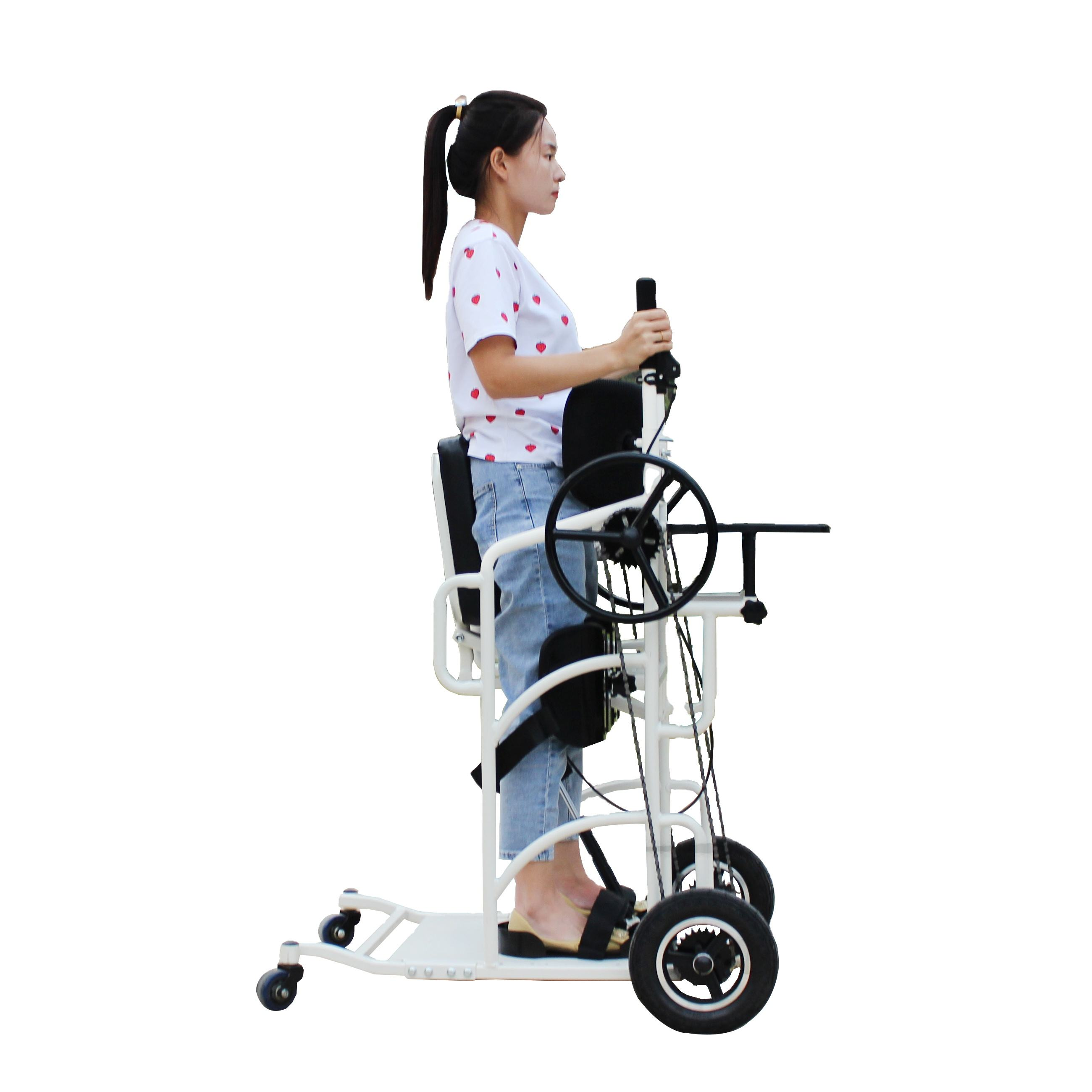 Orthopedic walker for adults walkers for the elderly rollators for the elderly moving aid to the vehicle lifting wheelchair