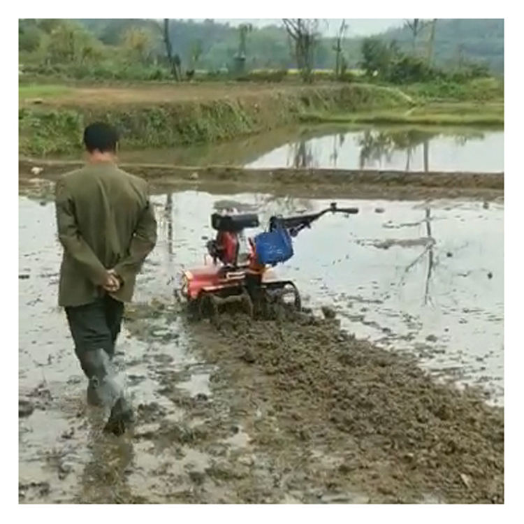 Powerful Gasoline Cultivator 170F 7HP Weeding Rotary Tiller for rice planted