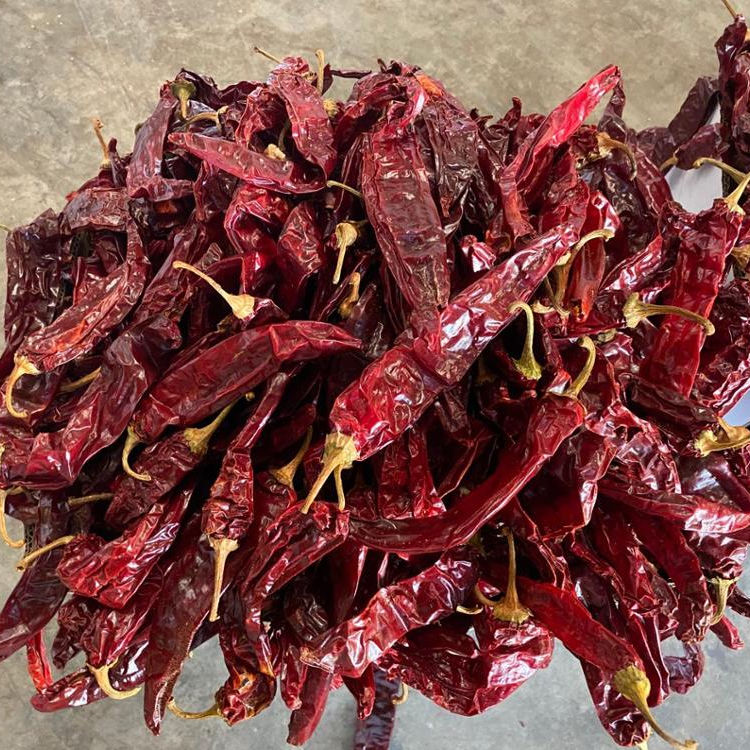 Fresh birds eye teja dried red chilli stem less for sale