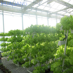 Vertical Hydroponics Farm For Sale