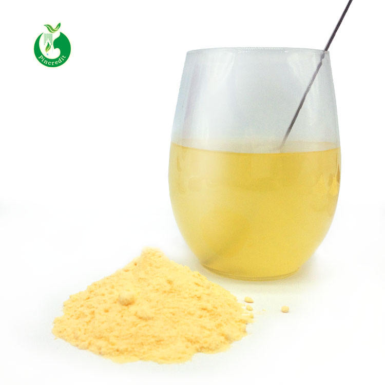 Bulk Organic Chinese Mandarin Orange Juice Powder
