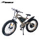 Strong power new 48v 1500w motorized electric bike bicycle for all terrain