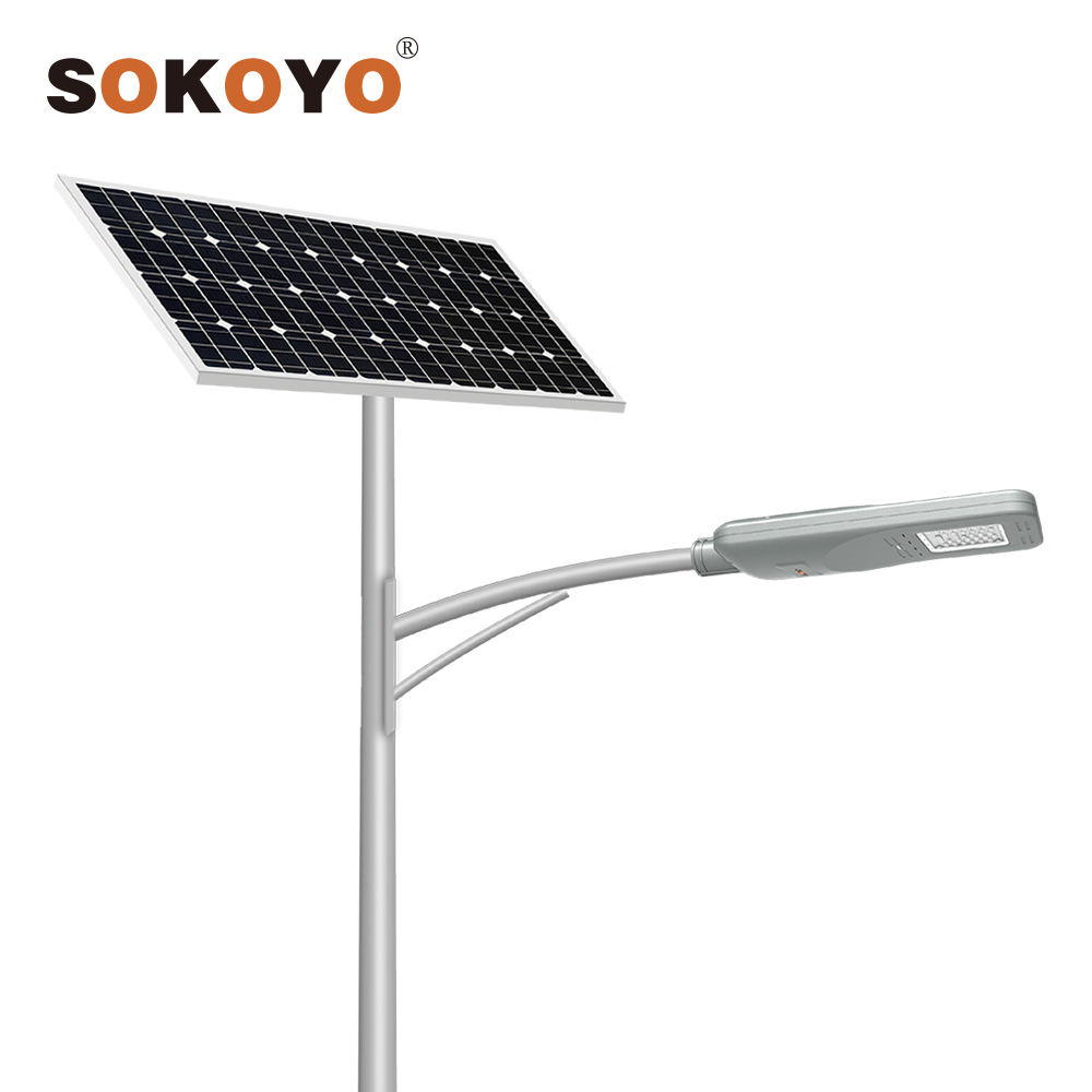 SOKOYO hot sale best price outdoor China factory ip66 solar lamp