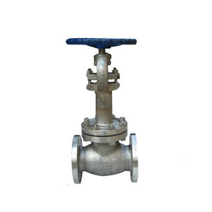 WZLD Stainless steel Cryogenic Globe Valve