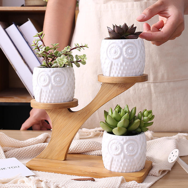 Handmade ceramic Macrame Plant display pot Indoor & outdoor Plant potting Home office Decoration