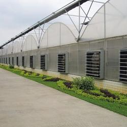 Multi-Span Agricultural Greenhouses  PE Sheet Cover Material agricultural greenhouses for tomato