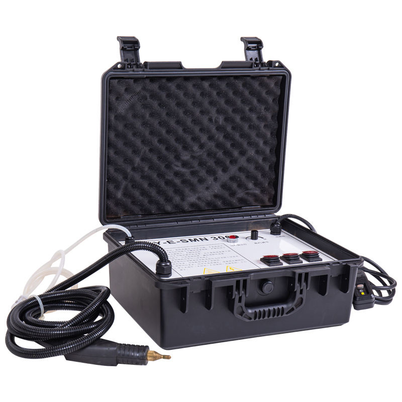 OEM powerful professional pressure car vapor hand held steam car wash cleaner machine