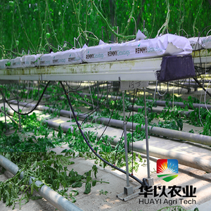 Hydroponic Gully Channel Hydroponic Fodder Growing Systems Equipment Vertical NFT Hydroponic