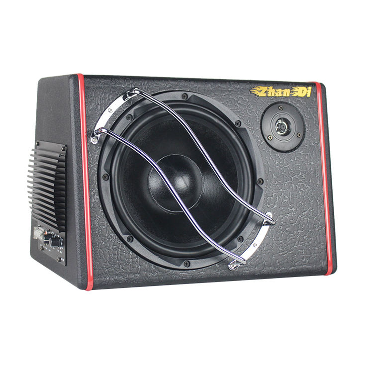 Direct Manufacturer New Style Car Audio 12V 10 Inch Speaker Subwoofer