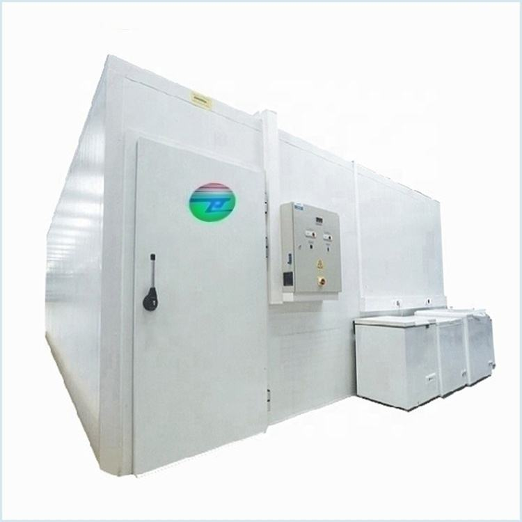 China professional manufacturer 40 Feet Blast Freezer Container Cold Room storage for fish