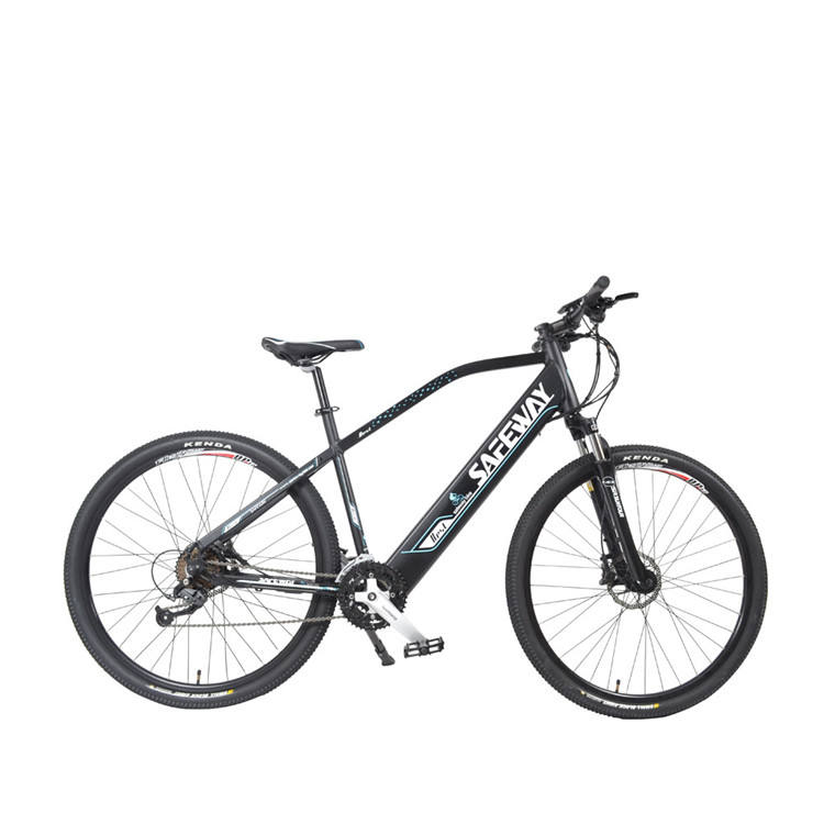 IN STOCK 29er mid drive mountain electric bicycle mtb for sale /wholesale cheap price 29 inch mountain e bike with high quality