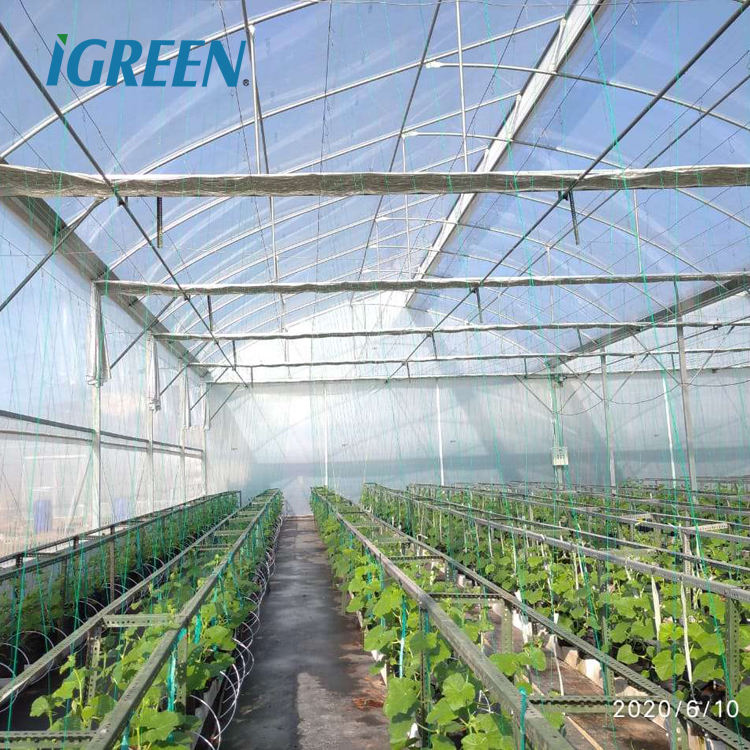 Reinforced strong double layer plastic film multi-span air inflated greenhouse for tropical and hurricane area