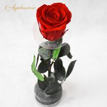 real rose preserved Valentine's Day gift long stem preserved roses Valentines Gift