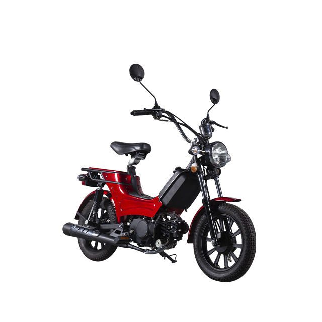 2019 Factory Direct Sale Europe Market High Quality 50cc 70cc 110cc EEC Super Cub Motorcycle