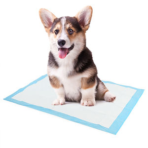 Dog Pet Disposable Absorbent Thickened Pads Deodorant Training Urine Clean Diapers