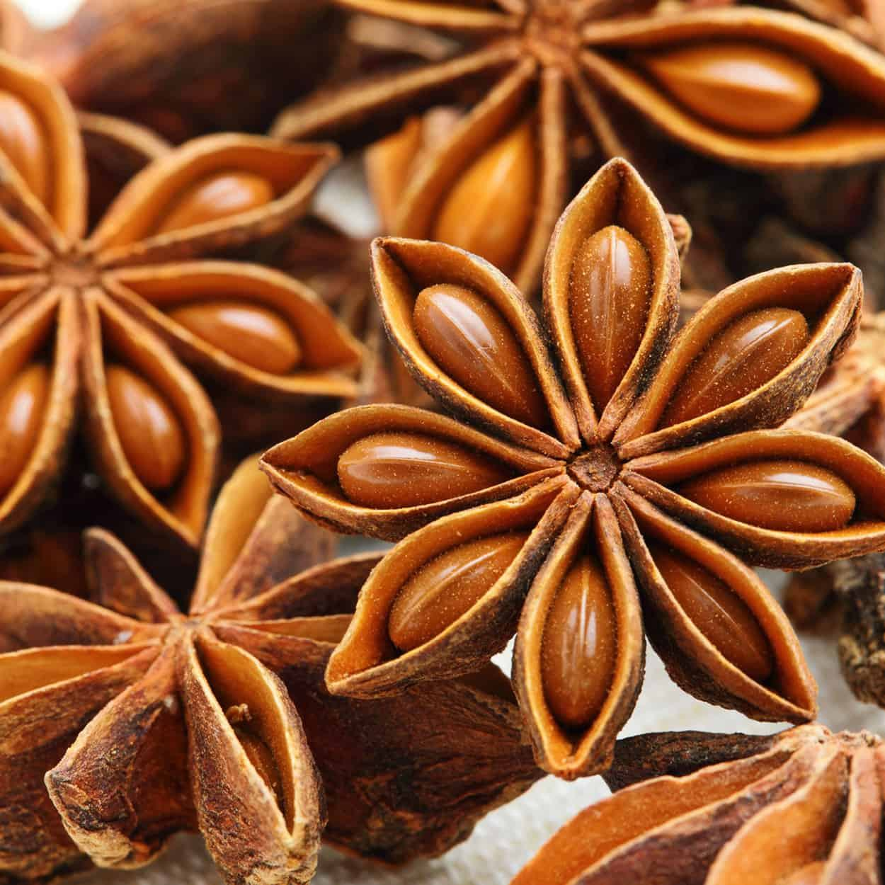 Chinese Spices&Herbs supplier wholesales Anise Seed Whole Anise Seed Star Ground Anise Seed Star Whole for Seasoning Materials