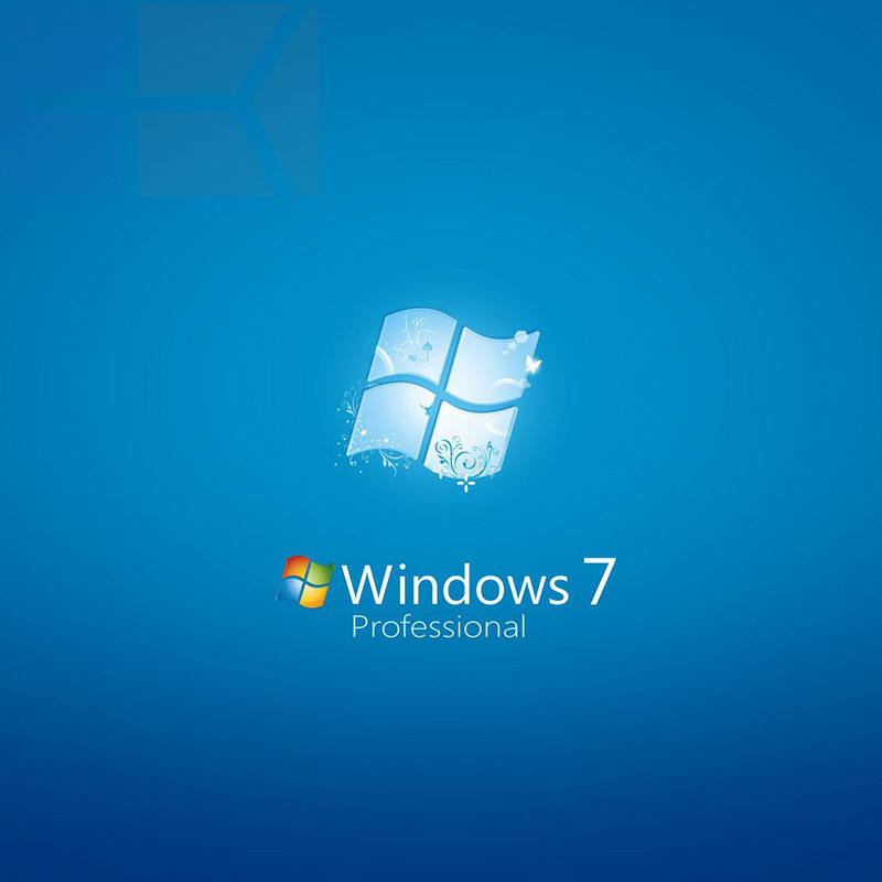 Microsoft Windows 7 Professional DVD MS Win 7 Pro Giấy Phép Khóa