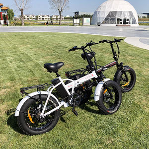 Husky fat tire 1000 w 48 v electric bike  Portable 20 inch fat tire electric bike 250w folding ebike chinese factory direct