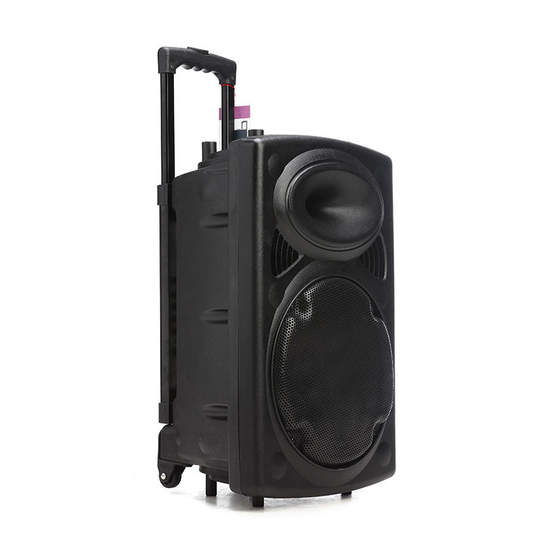 "15"" 35W Trolley Party Speaker With Bluetooth / Wireless Mocrophone"
