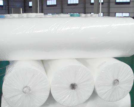 Spunbonded Non woven Fabric mulch Frost blanket agriculture Ground Cover garden Fleece cloth anti frost plant cover