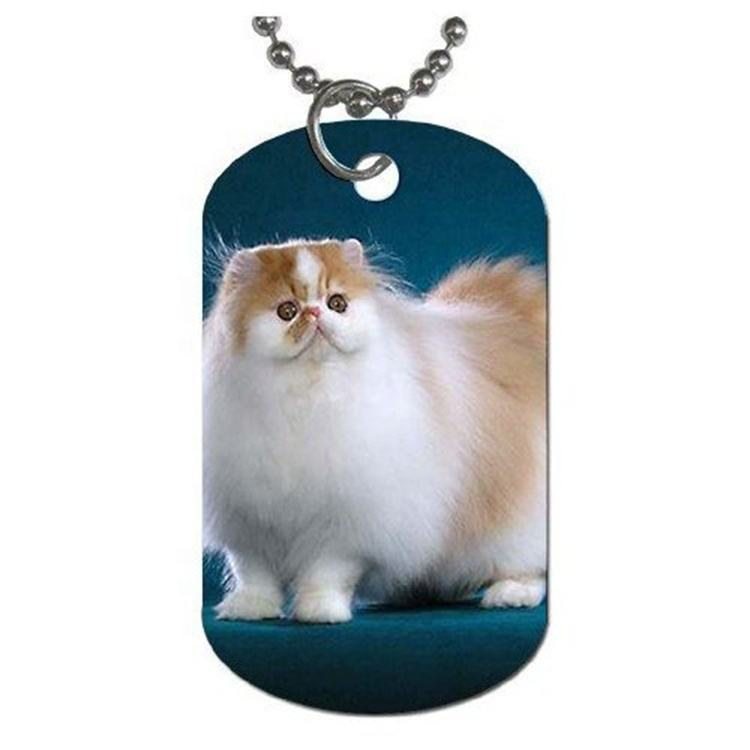 customized ID pet tags China manufacturer dog identified stainless steel tag with custom logo